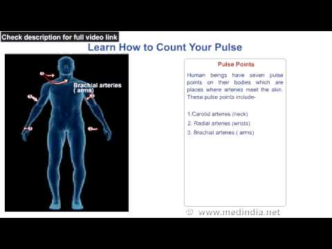 Learn How To Count Your Pulse