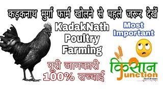 Kadaknath Poultry Farming Business कड़कनाथ
