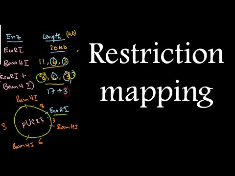 Restriction mapping tutorial 2 | restriction mapping problems for CSIR NET exam