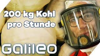 2 Tage schuften in der größten Sauerkraut Fabrik der Schweiz | Galileo | ProSieben