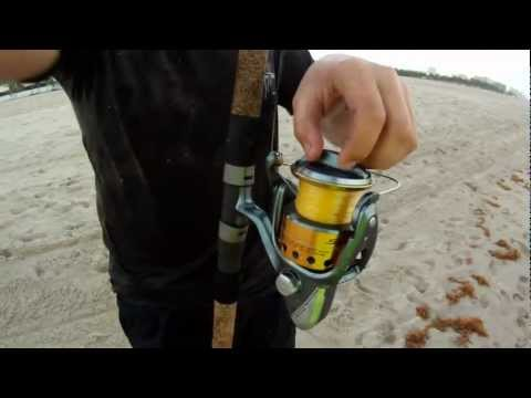 How To Catch Sharks From The Beach!