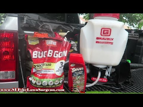 How to Prevent Mosquitos / Bugs in Lawn
