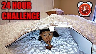 OVERNIGHT IN 1,000,000 PACKING PEANUTS   24 Hour Challenge
