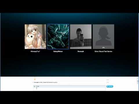 SkypeKonfi-Call#2