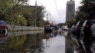 Сильные дожди прошли в нескольких районах Кубани