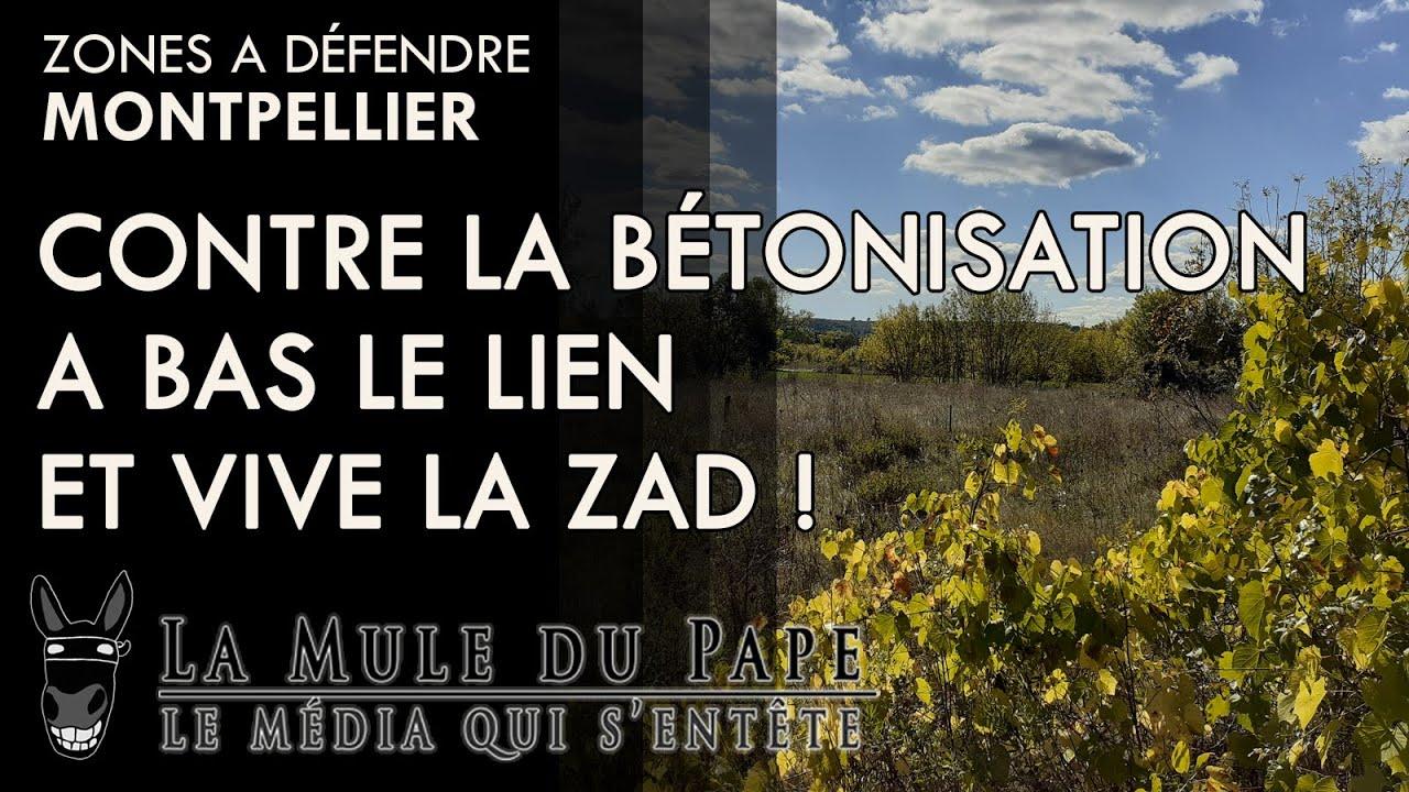 Montpellier - Contre la bétonisation, à bas le L.I.E.N et que vive la ZAD !