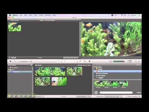 iMovie Video Tutorials - Import Audio