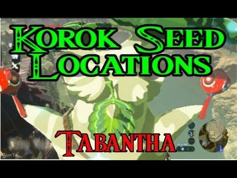 The Legend of Zelda:  Breathe of the Wild Korok Seeds Tabantha Tower Region