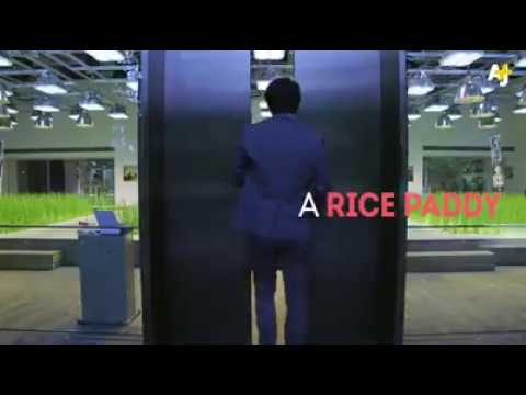 Farming inside office in Japan जापान में ऑफिस के अंदर खेती japan main office ke andar kheti baadi ka