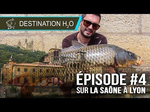 Destination H2O - Sur la SAÔNE A LYON