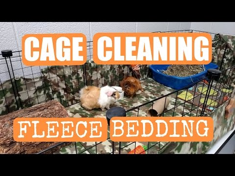 Guinea Pig Cage Cleaning Day: Fleece Bedding