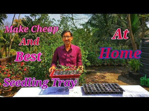 How to Make Cheap and Best SEEDLING TRAY at Home.