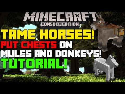 Minecraft Xbox & Playstation: How to Tame Horses & Get Chest on Mules & Donkeys! [Tutorial]
