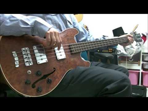 Paul McCartney - Heather - Bass
