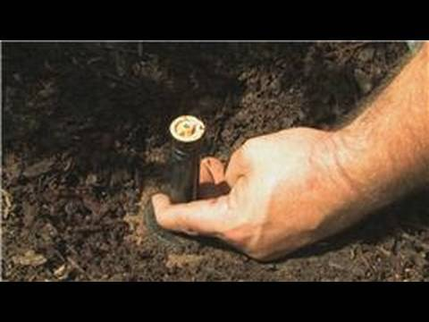 Lawn Care & Landscaping : How to Replace a Sprinkler Head