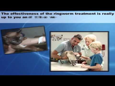 Ringworm In Your Cat