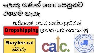 Ebayfee cal බොරු -How to calculate eBay dropshipping profit - Sinhala edition