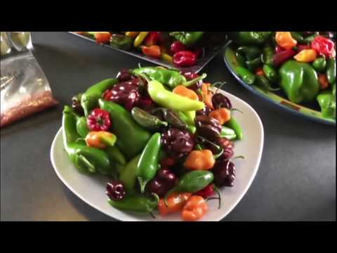 How to Dehydrate Chili Peppers and Make Chili Powders