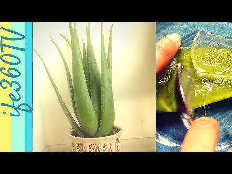 How to make Aloe Vera Juice   DIY Aloe Vera Juice for Natural Hair