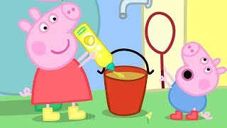 Peppa Pig English Episodes | Peppa and George Play With Bubbles | Peppa Pig Official