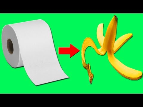 10 CRAZY ALTERNATIVES to TOILET PAPER!