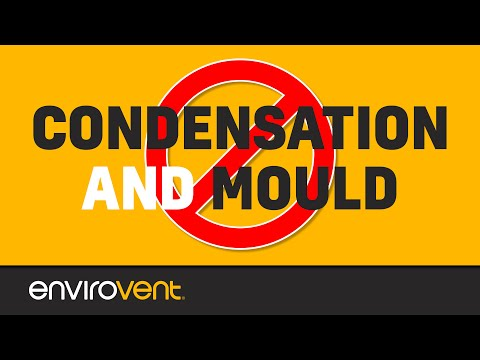 How to Stop Condensation & Mould Problems