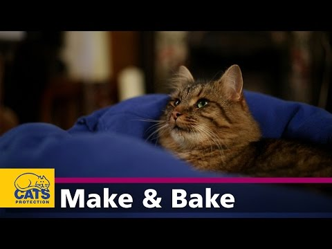 How to make a cat bed from a jumper - Feline Crafty episode four