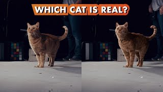Which Goose the Cat is Real? | Making Marvel Studios