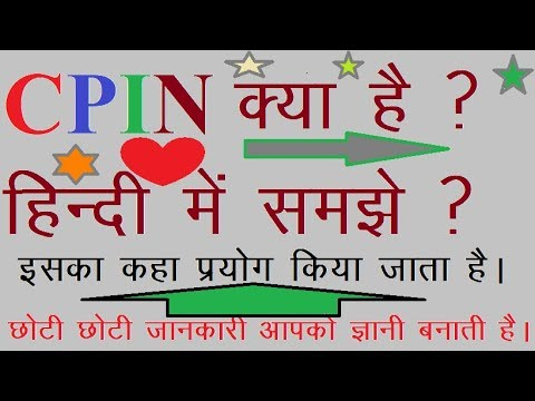 WHAT IS CPIN AND CIN NUMBER IN GST TAX CHALLAN LEARN HINDI