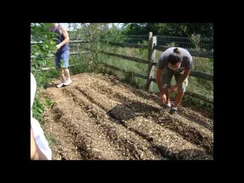 Lebanon Gardening and Permaculture Club