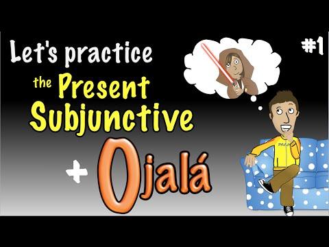 Spanish Present Subjunctive with Ojalá - Practice 1