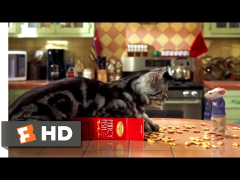 Stuart Little (1999) - A Mouse With a Pet Cat Scene (3/10) | Movieclips