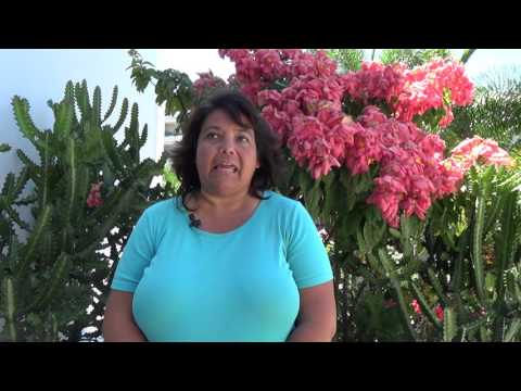 Why Travel Agent Success Kit - Tessa Pennell TASK Live Testimonial
