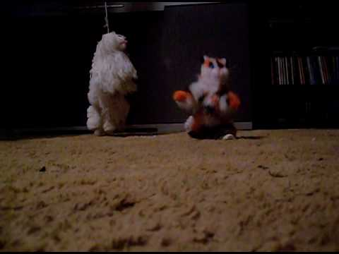 puppet cat and dog cha cha
