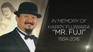 A special look at Mr. Fuji