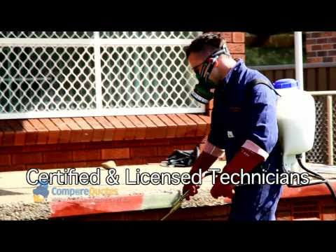 ABC Pest Control   Sydney Pest Control   Pest Control   Bed Bug Control   Bed Bug Detection