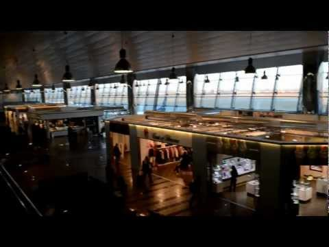 A walk around Turin Caselle Airport. Aeroporto Torino Caselle. Panoramica.