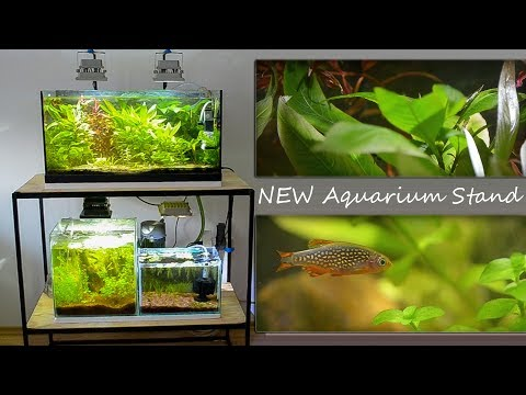 Making Aquarium stand for Low Tech Planted Tanks | Without CO2