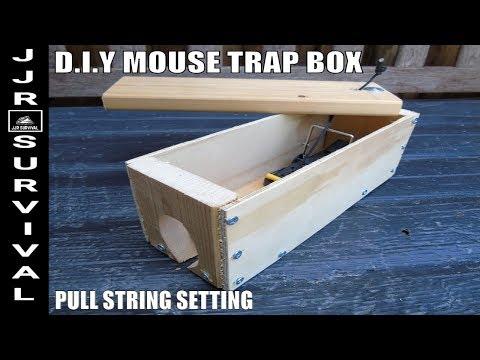 DIY Easy Set Mouse Trap Box