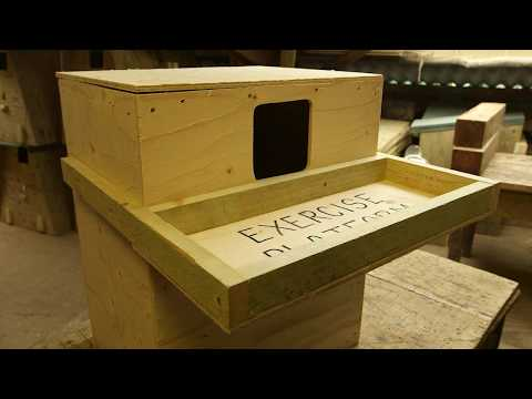 How to Build a Barn Owl Nestbox for Inside a Building