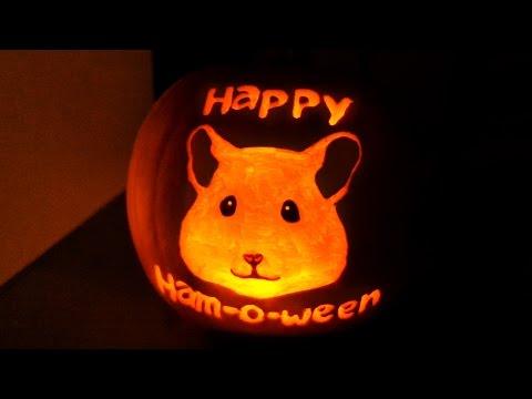 🎃 How to carve a cute pet pumpkin! 🎃