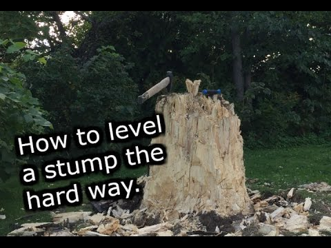 Stump removal the hard way. With Axe and saw.
