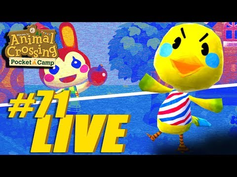 Twiggy Tweets!! Animal Crossing: Pocket Camp Live Stream