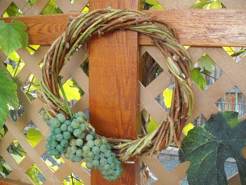 Easy Grape Vine Wreath DIY Part 1 of 2