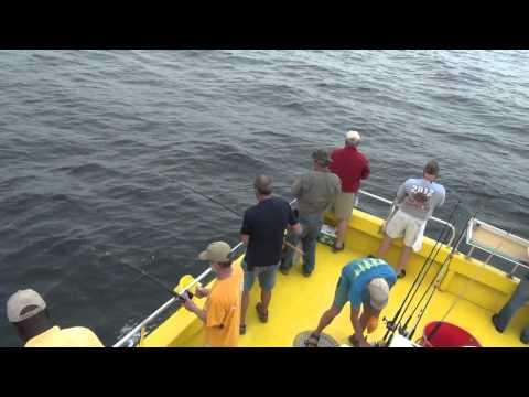 3 Deep Sea Fishing (Reel Suprise )
