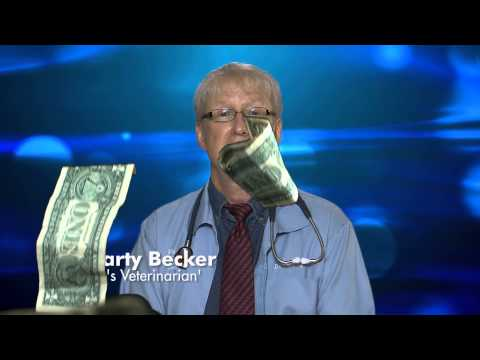 354 Seconds on...Adopt (Dr. Marty Becker)