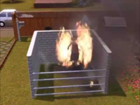 Sims 3 Pets - trying to kill someone