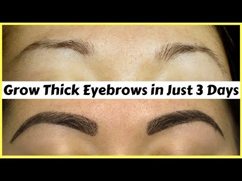 How To Grow Your Eyebrows Thick & Strong In Just 3 Days | Natural Home Remedies | 100% Works