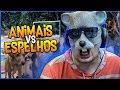 ANIMAIS VS ESPELHOS, IMPOSSÍVEL NÃO RIR COM ESSES VÍDEOS 🐶🐱