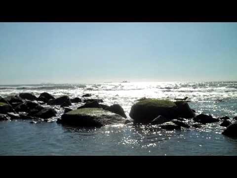 Hotel del Coronado from beach.MP4